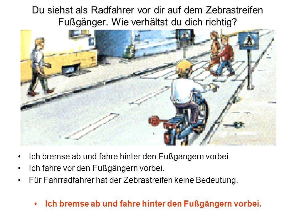Du siehst als Radfahrer vor dir auf dem Zebrastreifen Fußgänger