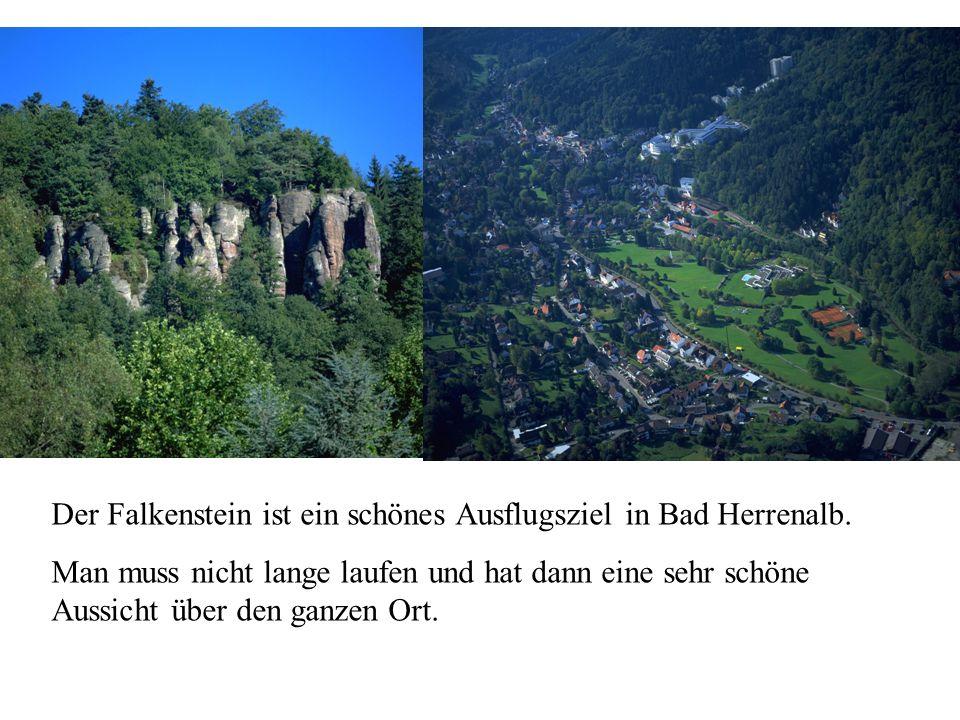 Der Falkenstein ist ein schönes Ausflugsziel in Bad Herrenalb.