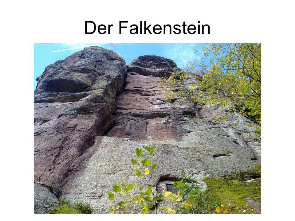 Der Falkenstein