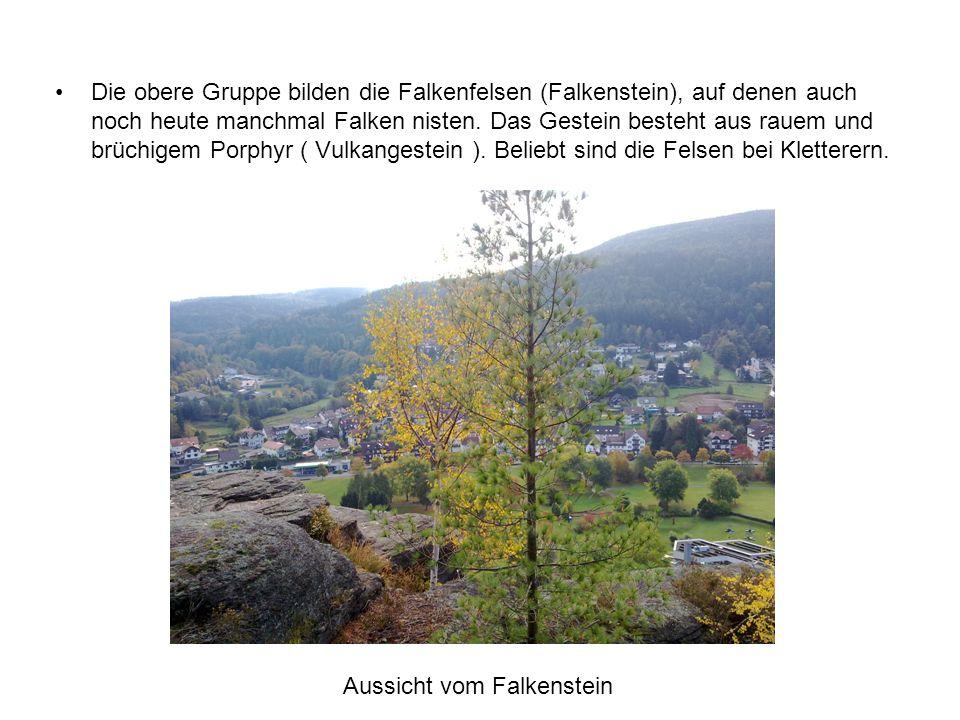 Aussicht vom Falkenstein