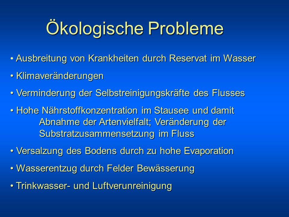 Ökologische ProblemeAusbreitung von Krankheiten durch Reservat im Wasser. Klimaveränderungen. Verminderung der Selbstreinigungskräfte des Flusses.