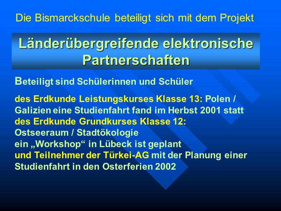 Länderübergreifende elektronische Partnerschaften