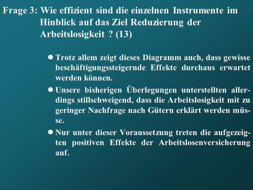 Frage 3: Wie effizient sind die einzelnen Instrumente im Hinblick auf das Ziel Reduzierung der Arbeitslosigkeit (13)