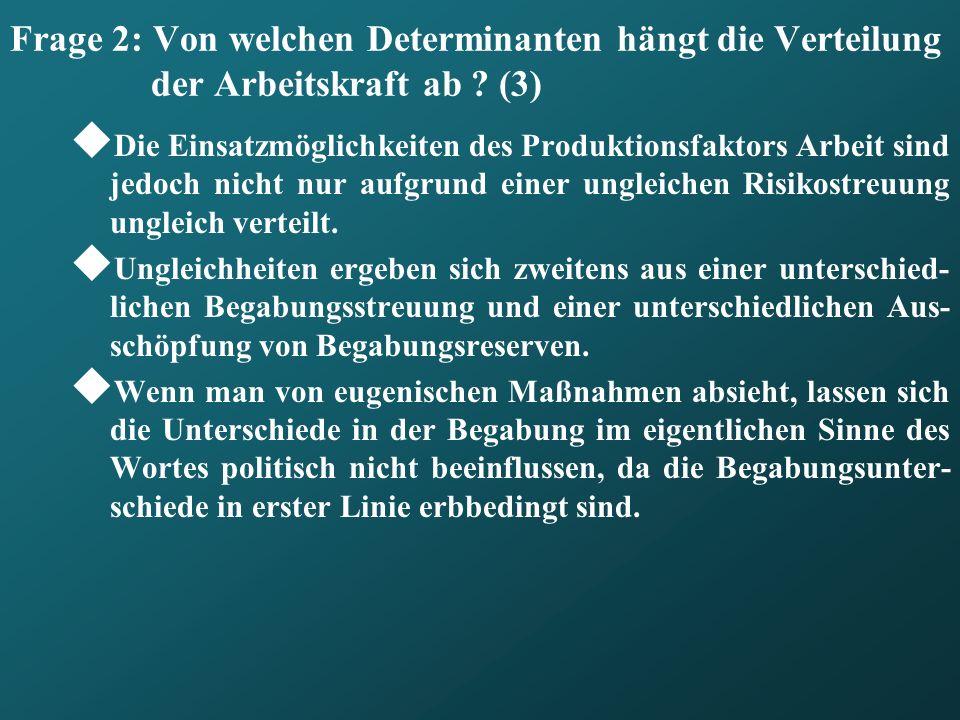 Frage 2: Von welchen Determinanten hängt die Verteilung der Arbeitskraft ab (3)