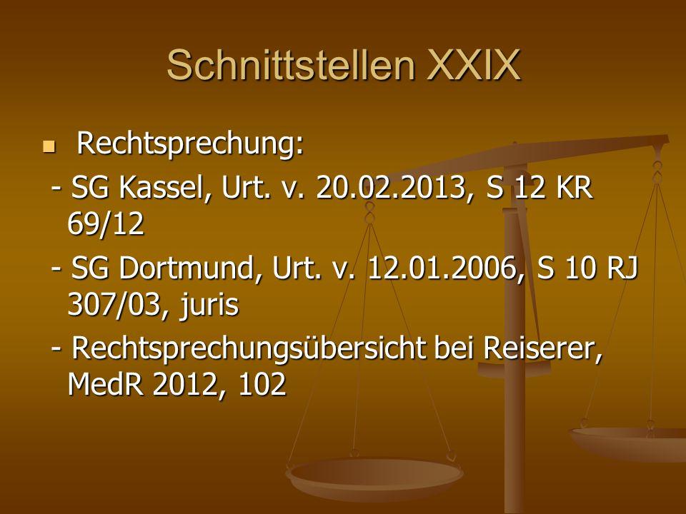 Schnittstellen XXIX Rechtsprechung: