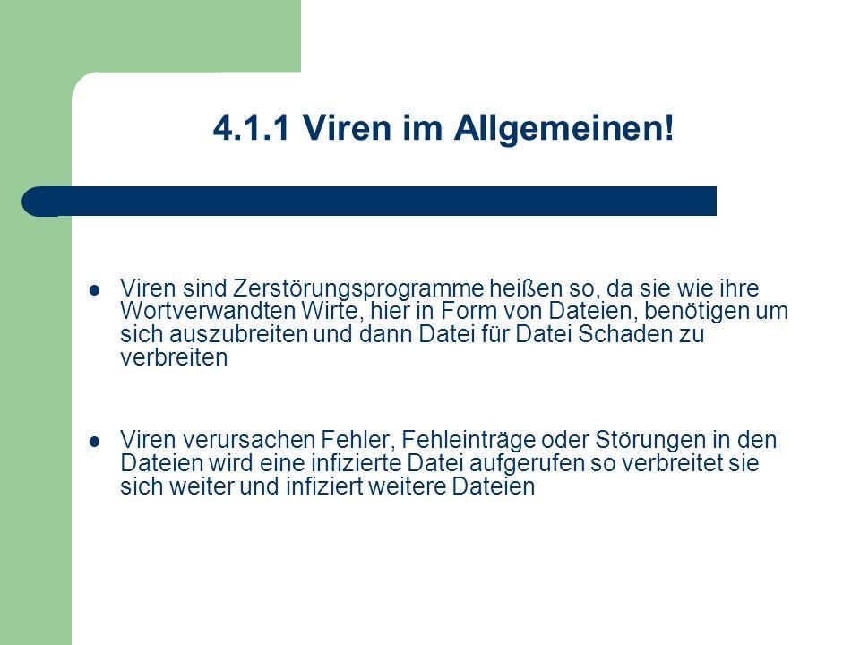 4.1.1 Viren im Allgemeinen!