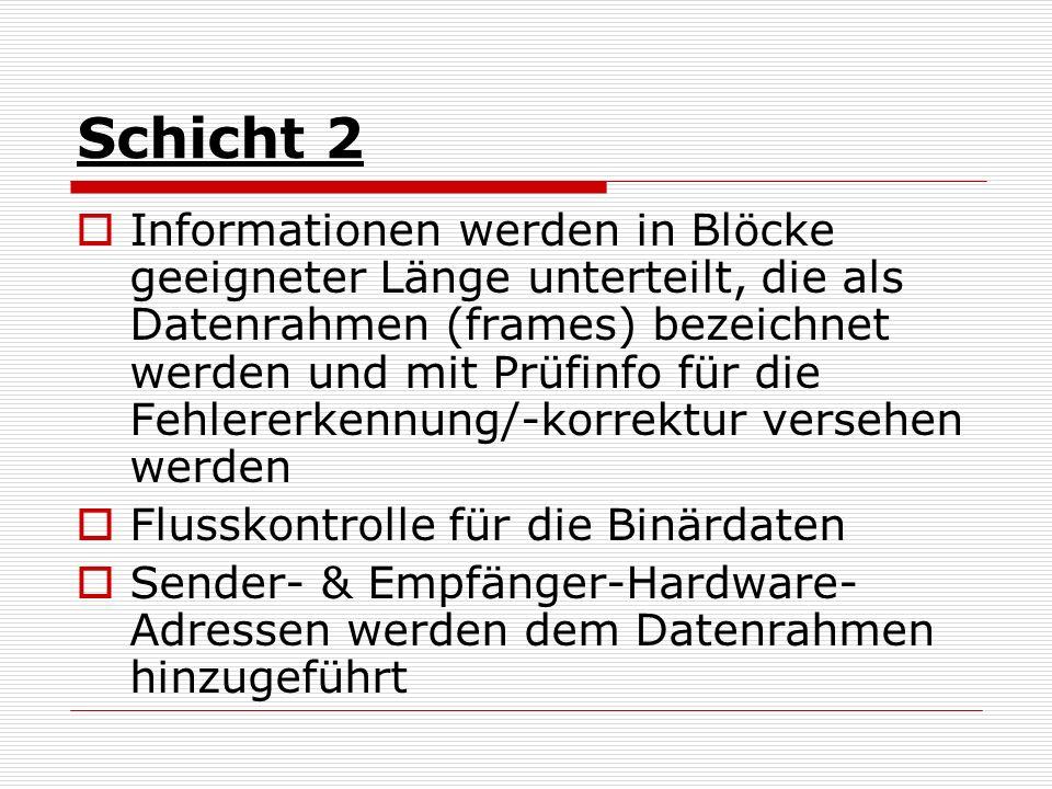 Schicht 2