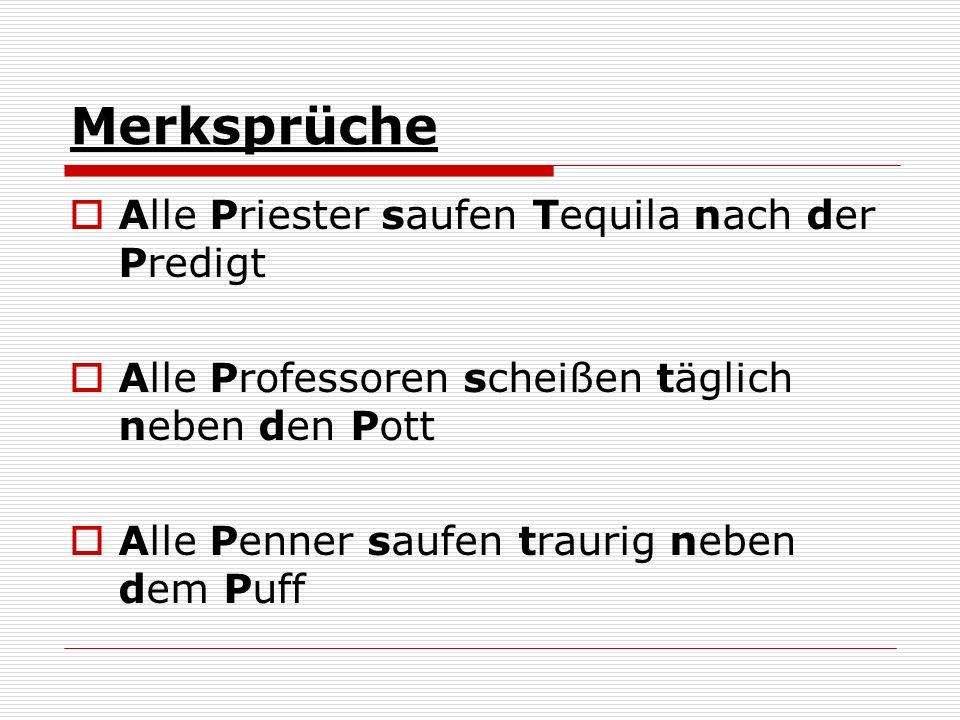 Merksprüche Alle Priester saufen Tequila nach der Predigt