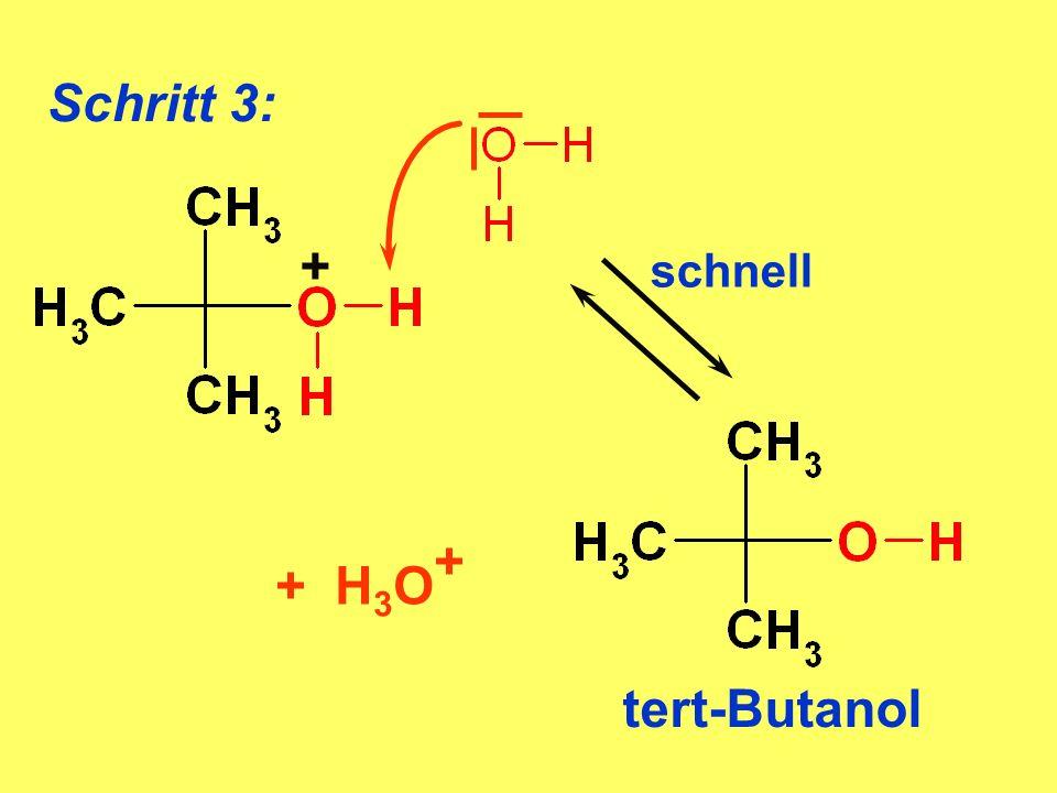 Schritt 3: + + H3O+ tert-Butanol