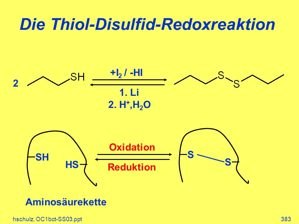 Die Thiol-Disulfid-Redoxreaktion