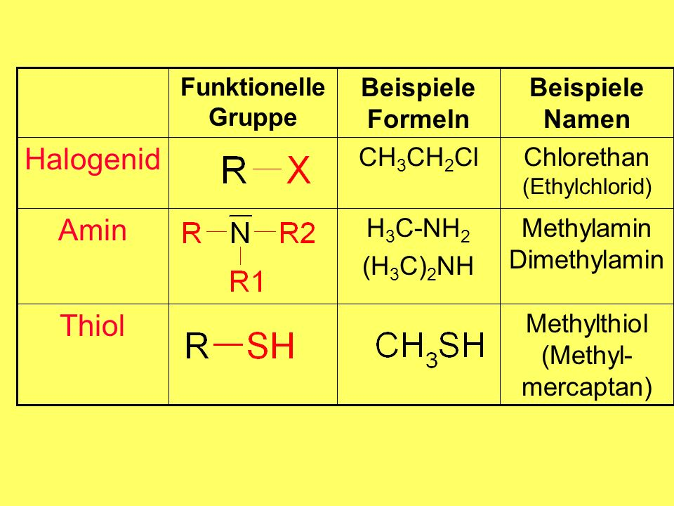 Halogenid Amin Thiol H3C-NH2 (H3C)2NH CH3CH2Cl Beispiele Formeln