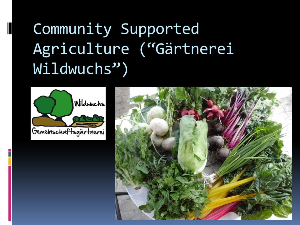 Community Supported Agriculture ( Gärtnerei Wildwuchs )