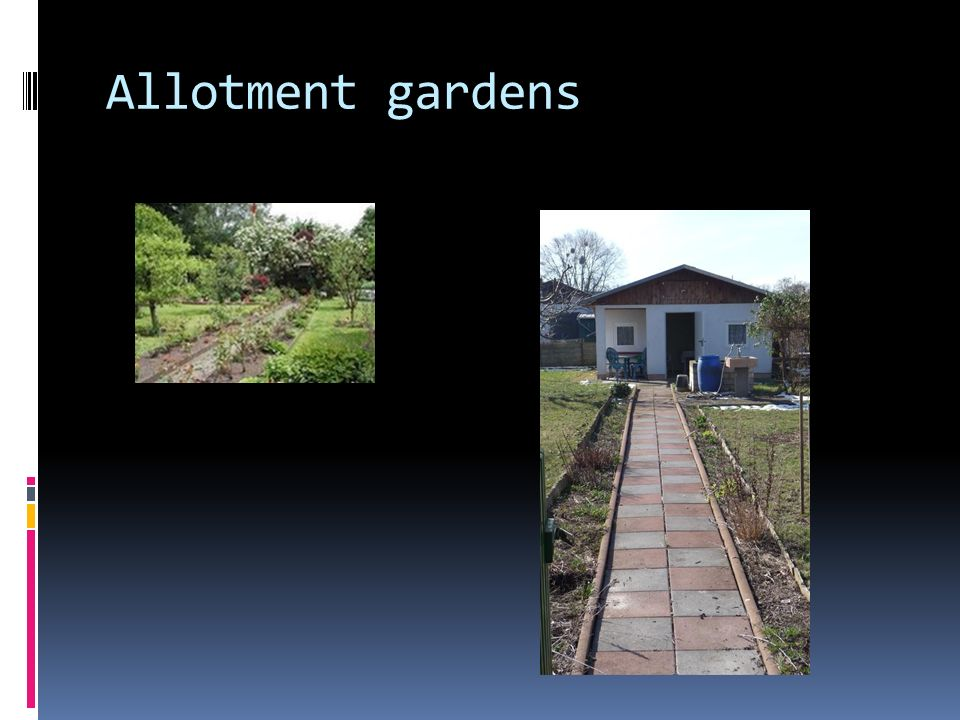 Allotment gardens Today, about 2816 ha. (13, 80 % of the urban space) are cultivated by agrarian and horticulture companies.