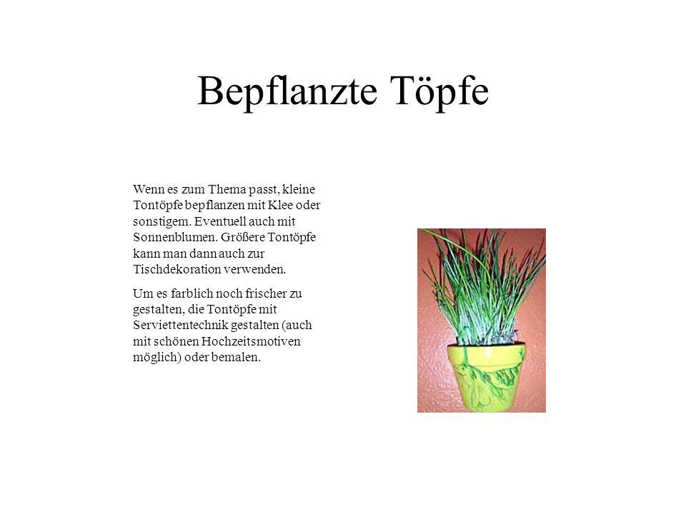 Bepflanzte Töpfe