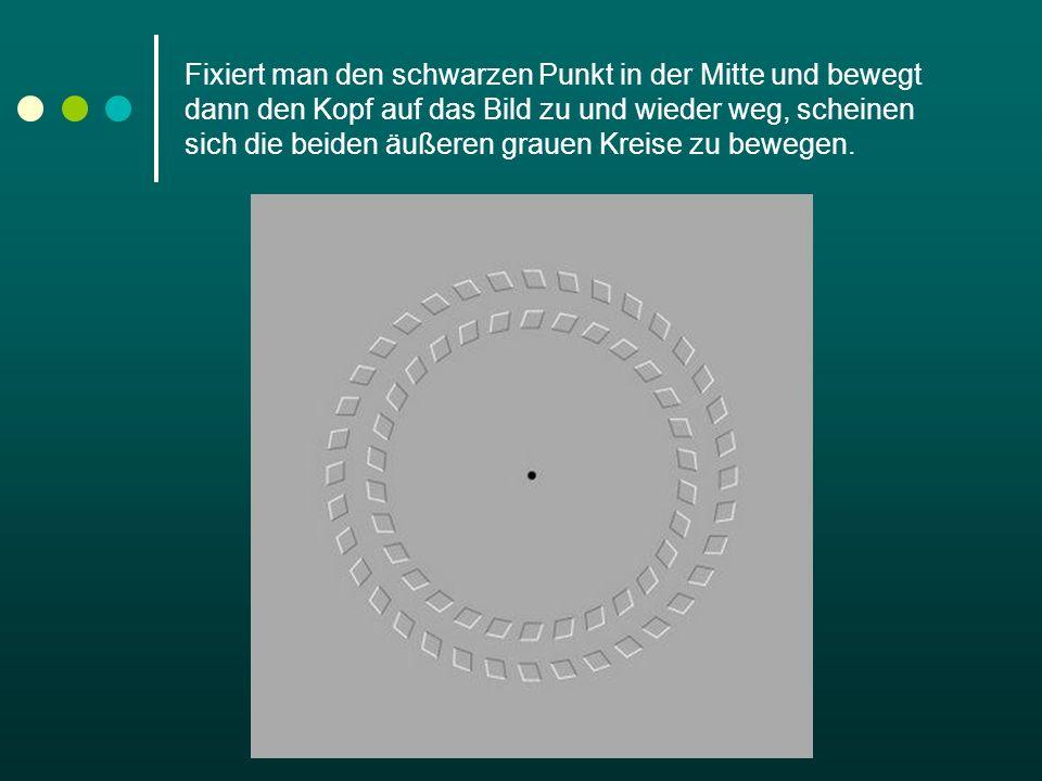 Fixiert man den schwarzen Punkt in der Mitte und bewegt dann den Kopf auf das Bild zu und wieder weg, scheinen sich die beiden äußeren grauen Kreise zu bewegen.