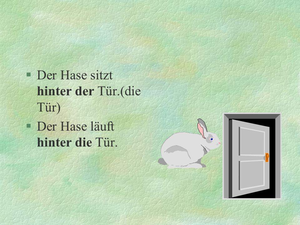 Der Hase sitzt hinter der Tür.(die Tür)