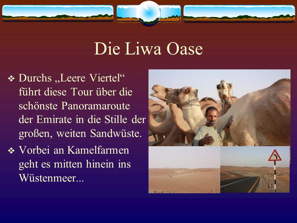 """Die Liwa Oase Durchs """"Leere Viertel führt diese Tour über die schönste Panoramaroute der Emirate in die Stille der großen, weiten Sandwüste."""