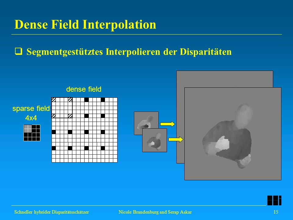 Dense Field Interpolation