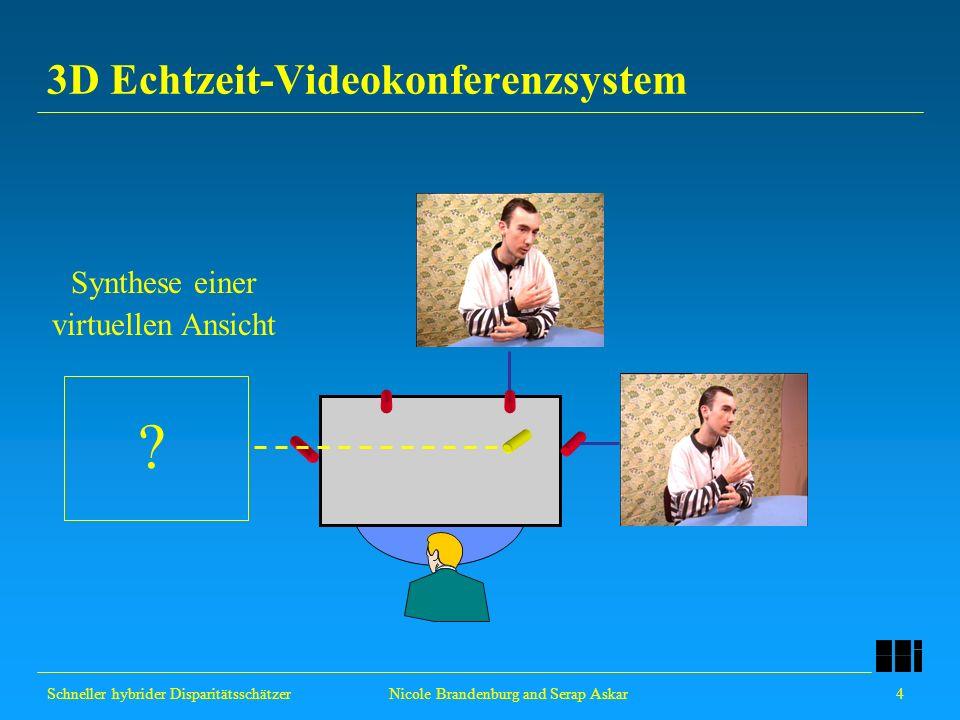 3D Echtzeit-Videokonferenzsystem