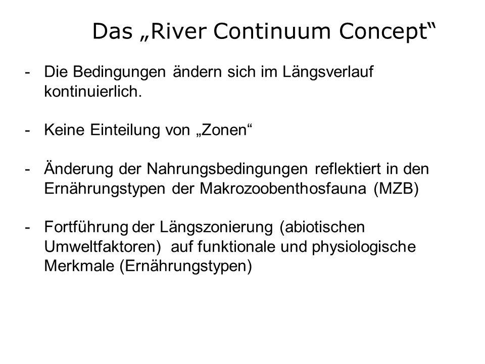 "Das ""River Continuum Concept"