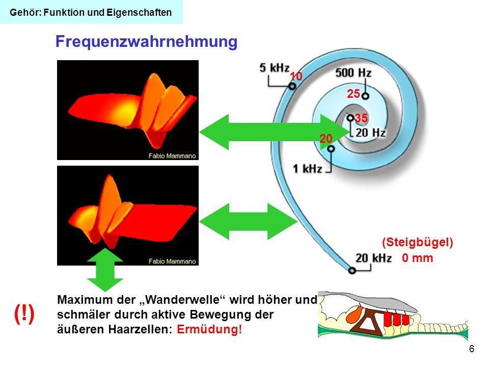 (!) Frequenzwahrnehmung 10 25 35 20 (Steigbügel) 0 mm