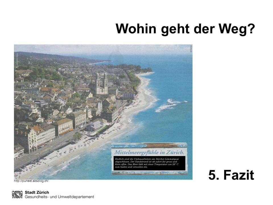 Wohin geht der Weg 5. Fazit http://puneet.absolog.ch/
