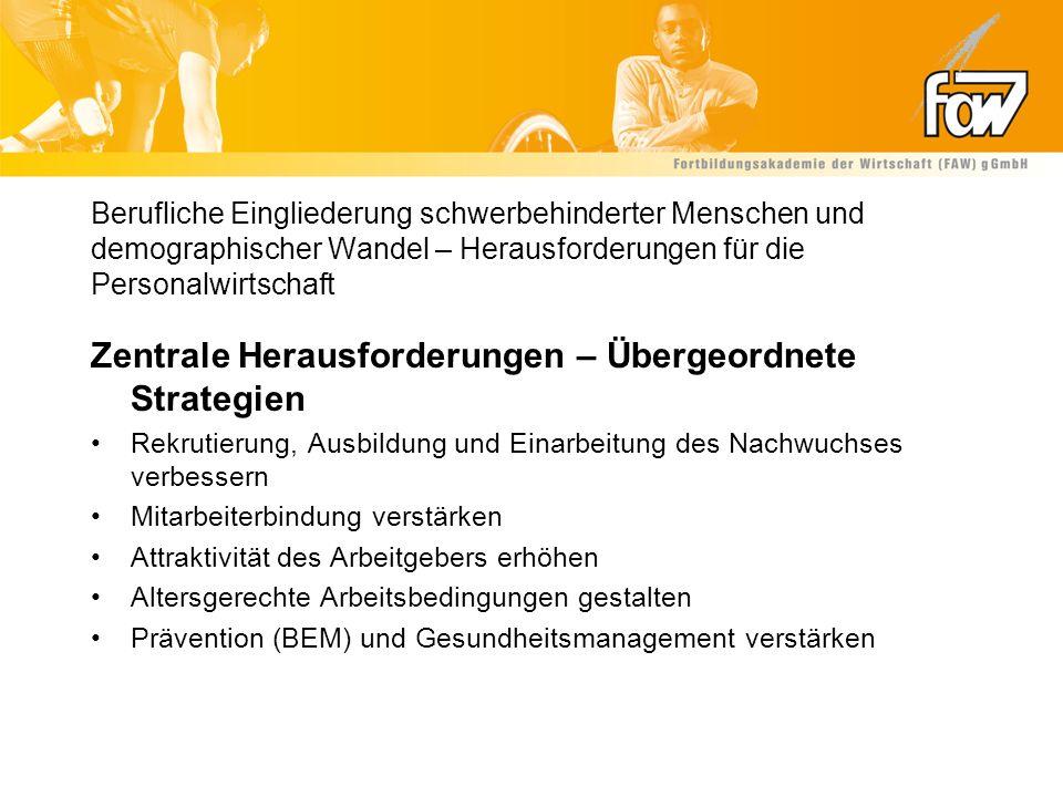Zentrale Herausforderungen – Übergeordnete Strategien