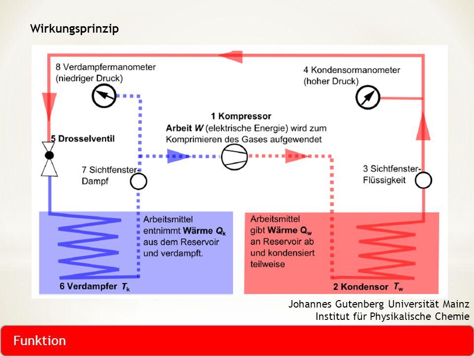 Funktion Wirkungsprinzip Johannes Gutenberg Universität Mainz
