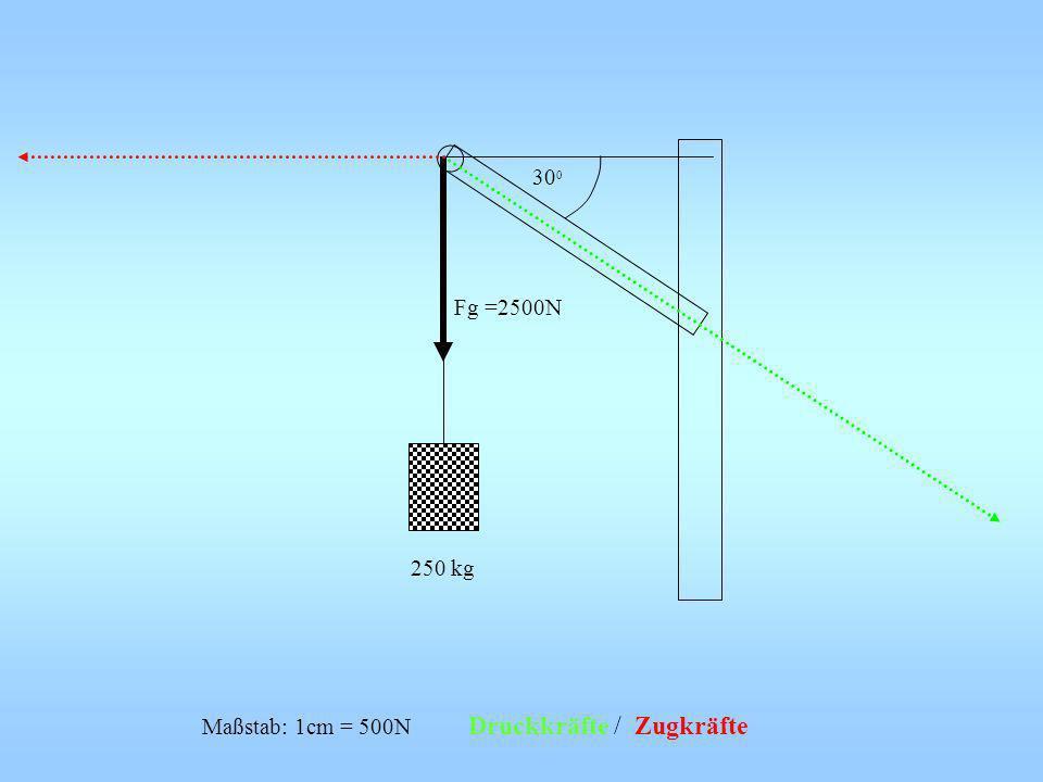300 Fg =2500N 250 kg Maßstab: 1cm = 500N Druckkräfte / Zugkräfte