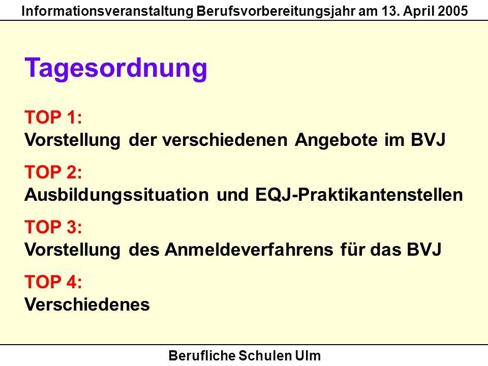 Tagesordnung TOP 1: Vorstellung der verschiedenen Angebote im BVJ