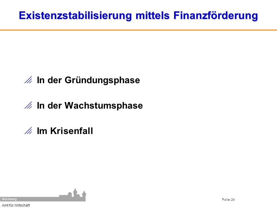 Existenzstabilisierung mittels Finanzförderung