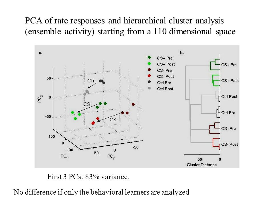 PCA of rate responses and hierarchical cluster analysis