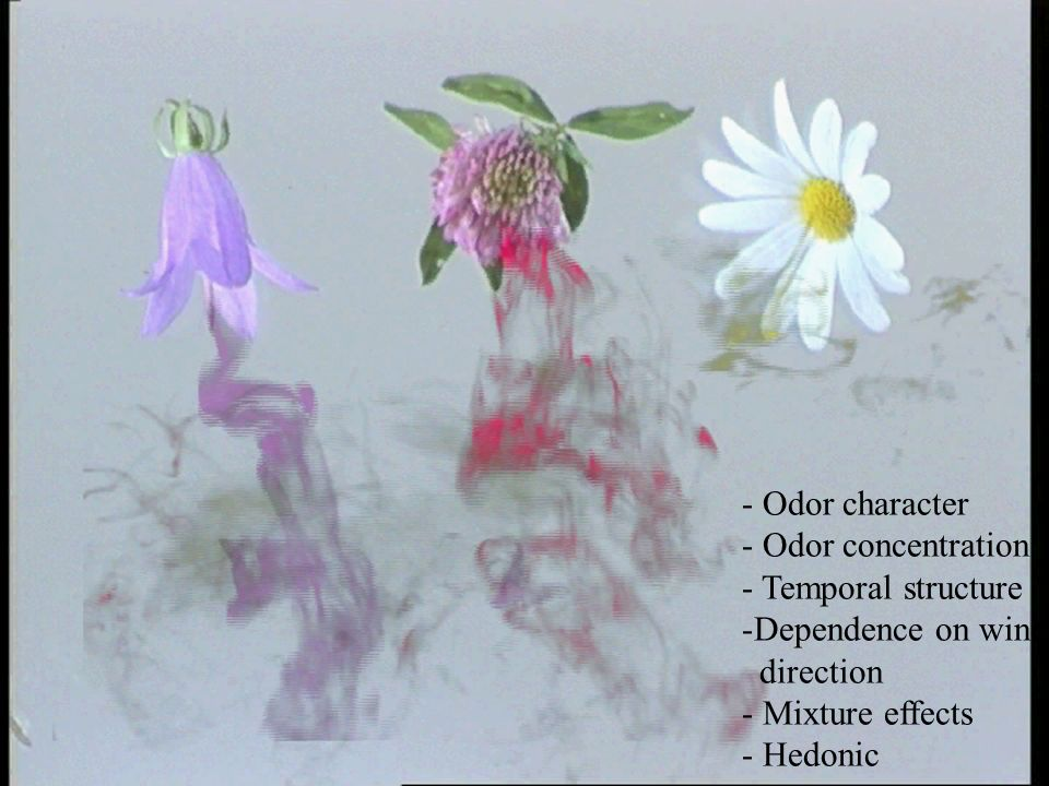 - Odor character- Odor concentration. - Temporal structure. Dependence on wind. direction. Mixture effects.