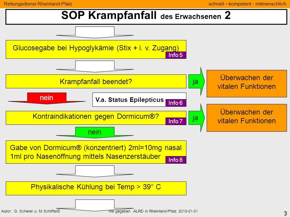 SOP Krampfanfall des Erwachsenen 2