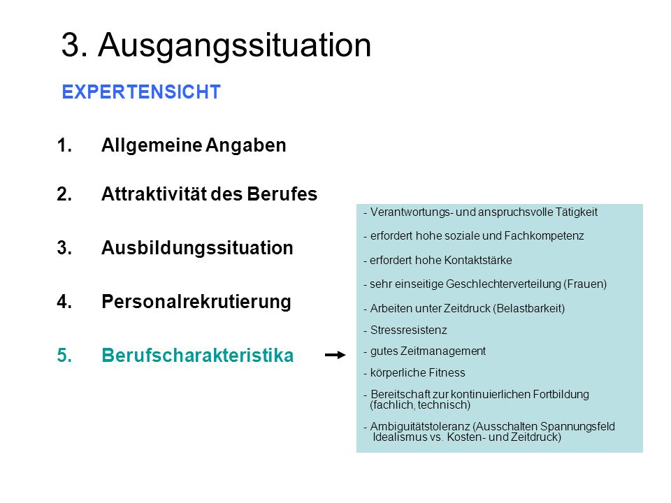 3. Ausgangssituation EXPERTENSICHT Allgemeine Angaben