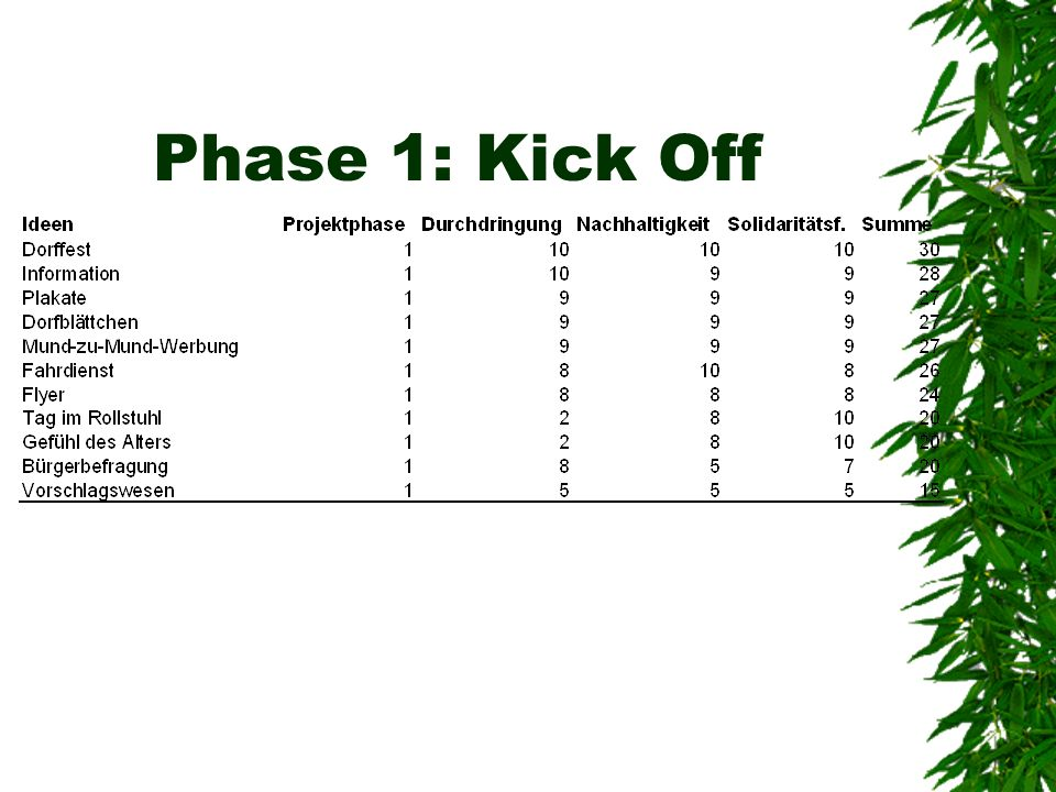 Phase 1: Kick Off