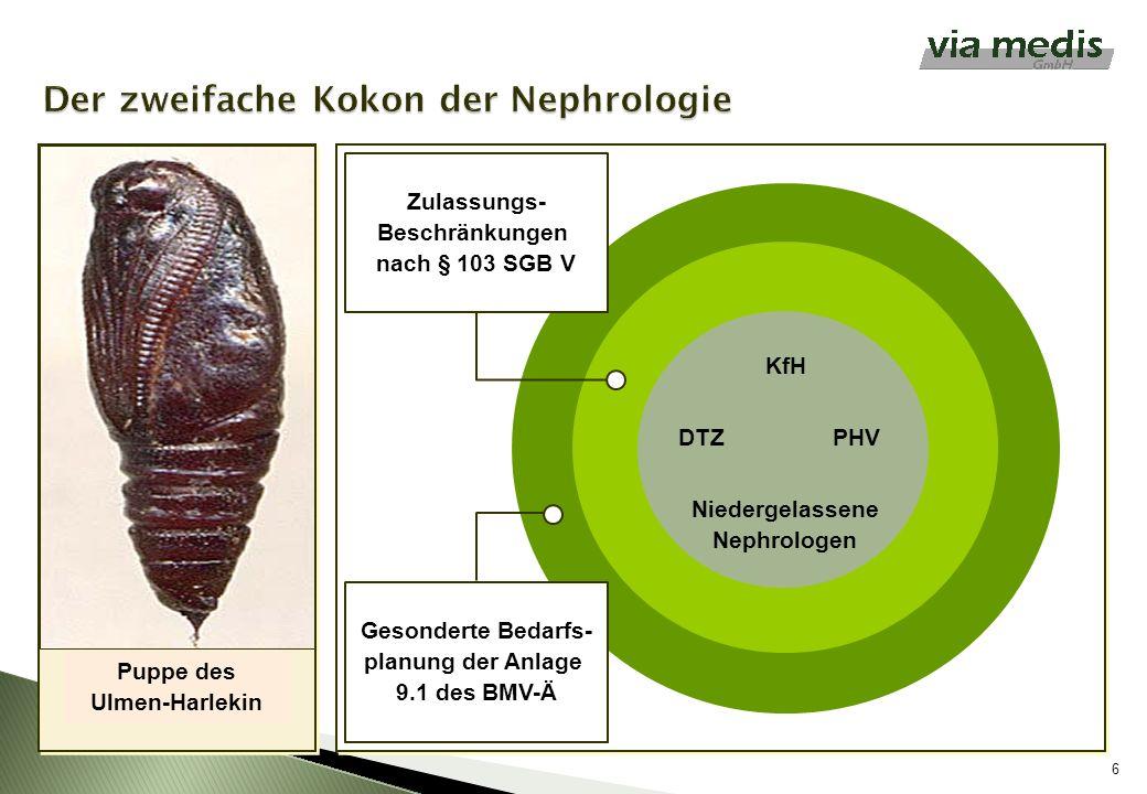 Der zweifache Kokon der Nephrologie