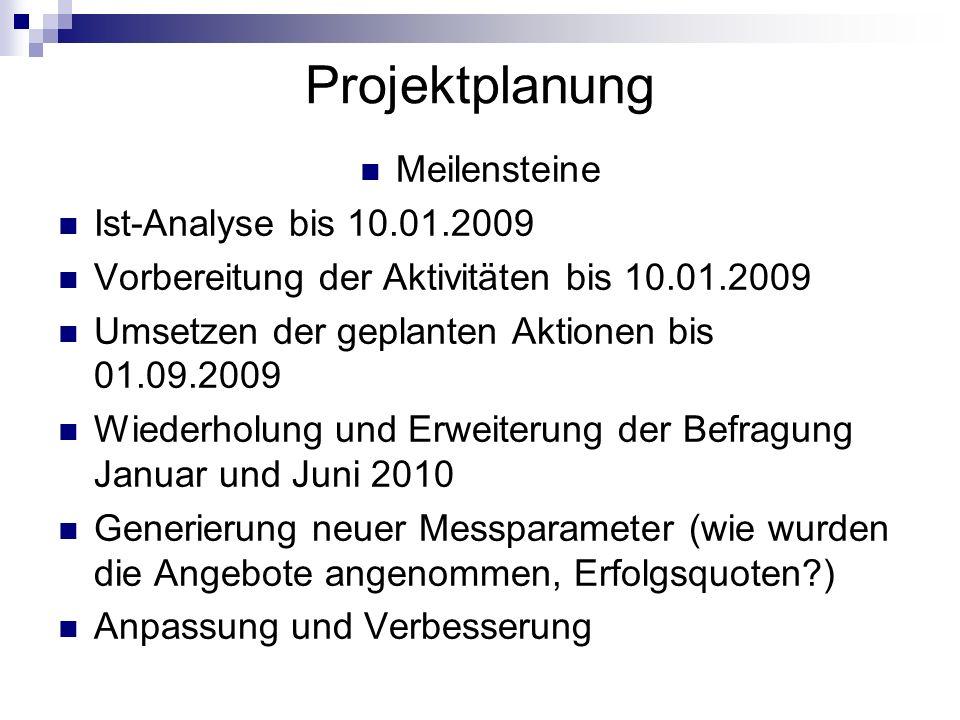Projektplanung Meilensteine Ist-Analyse bis 10.01.2009