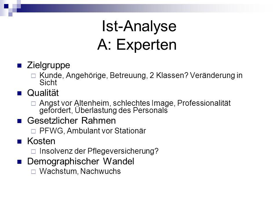 Ist-Analyse A: Experten