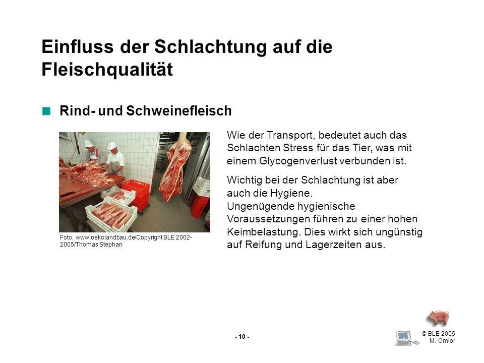 Einfluss der Schlachtung auf die Fleischqualität