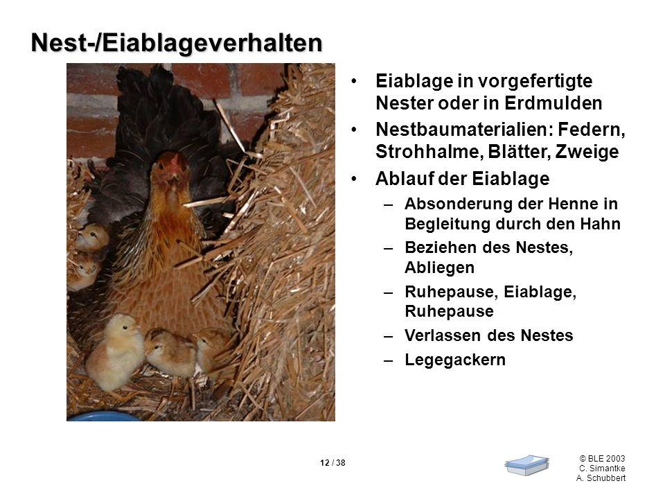 Nest-/Eiablageverhalten