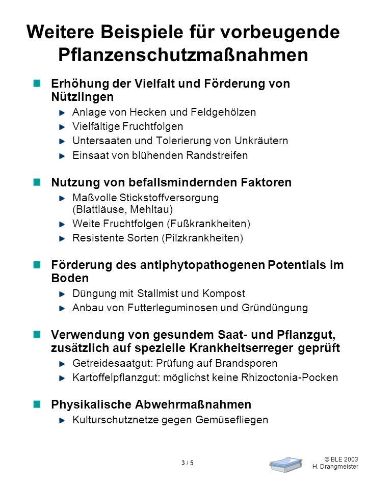 Weitere Beispiele für vorbeugende Pflanzenschutzmaßnahmen