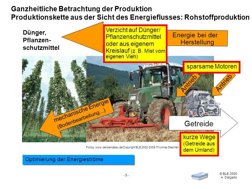 Getreide Ganzheitliche Betrachtung der Produktion