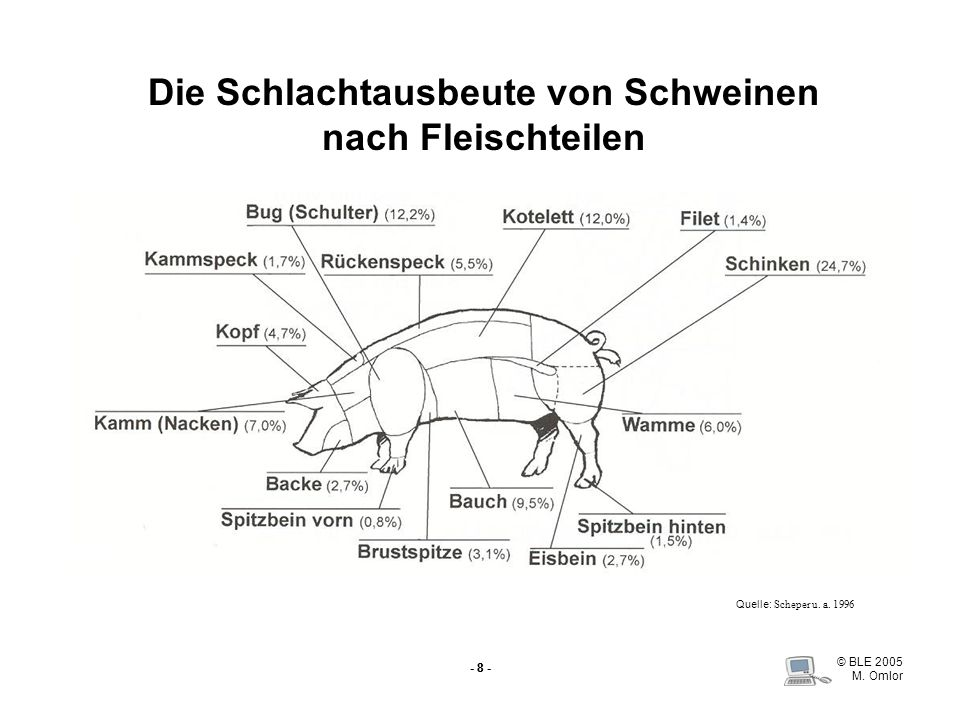 Die Schlachtausbeute von Schweinen nach Fleischteilen