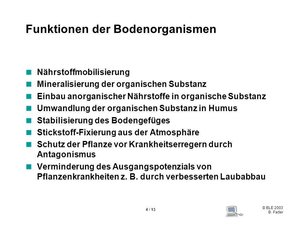 Funktionen der Bodenorganismen