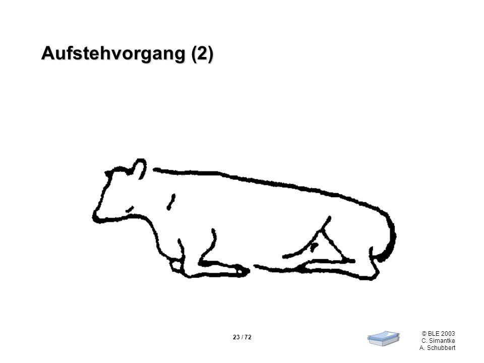 Aufstehvorgang (2)
