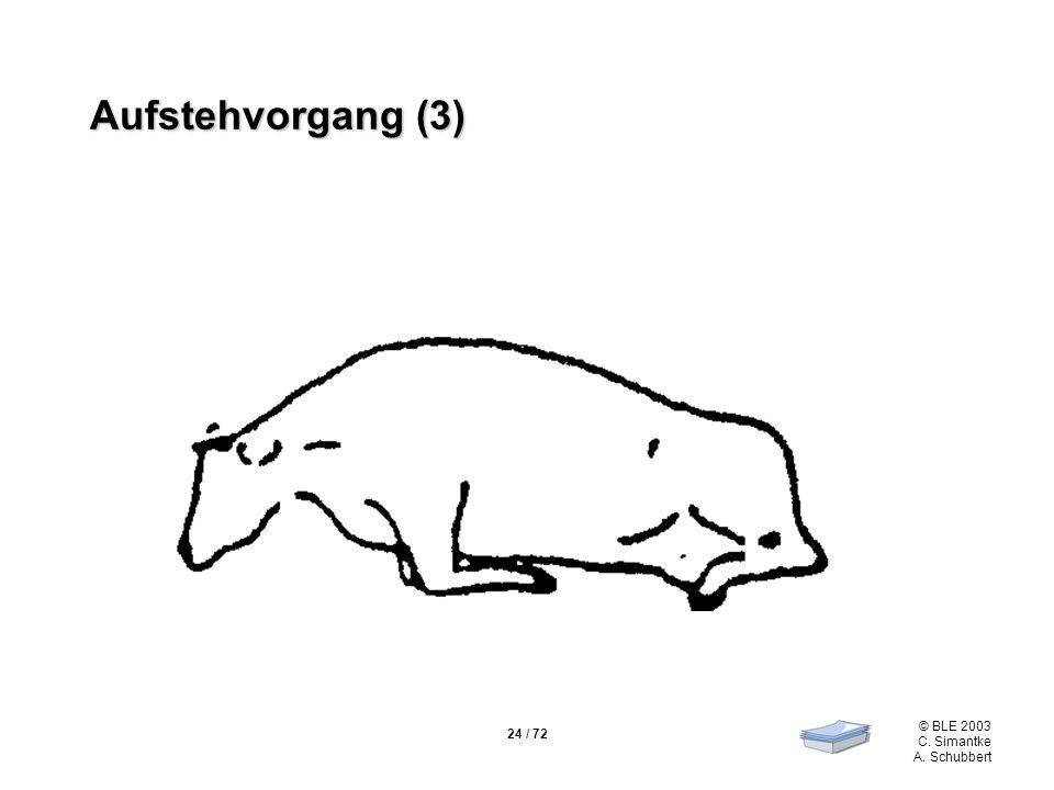 Aufstehvorgang (3)