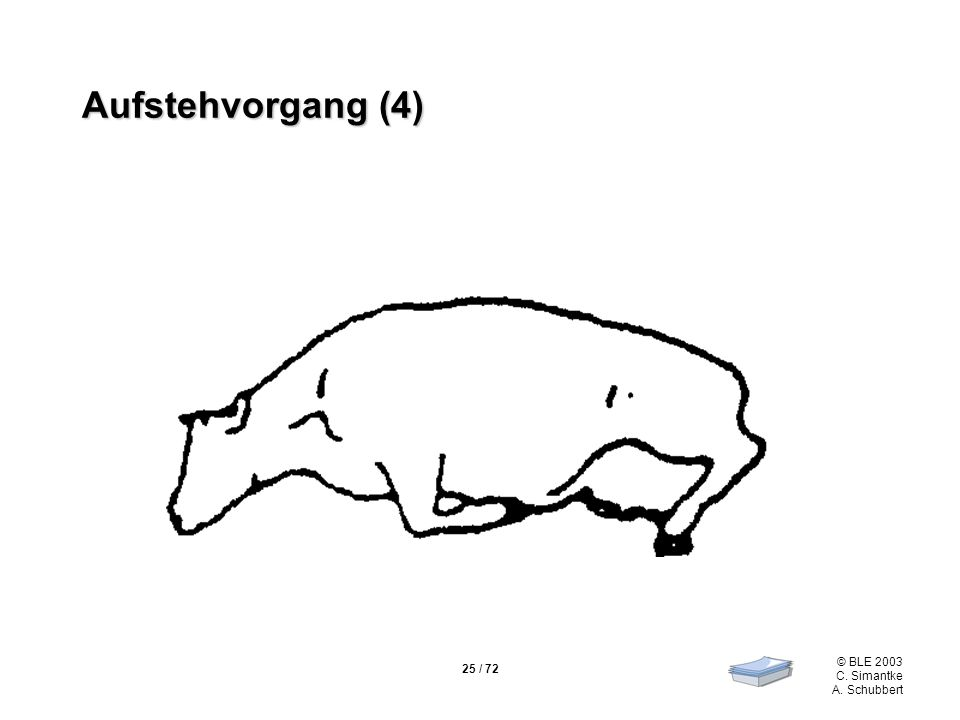 Aufstehvorgang (4)