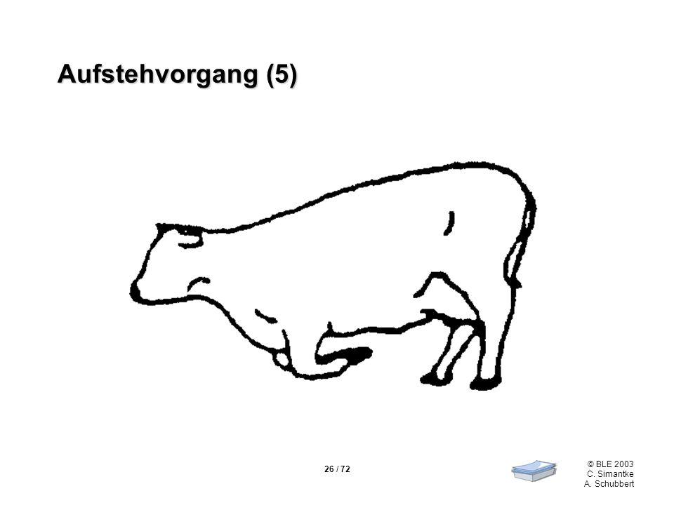 Aufstehvorgang (5)