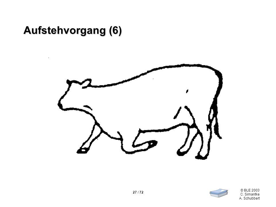 Aufstehvorgang (6)